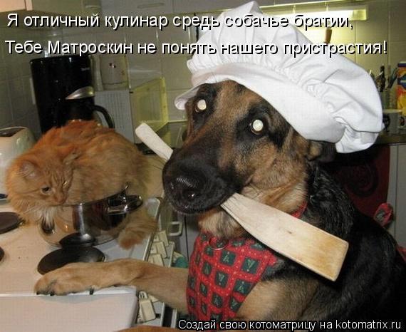 Котоматрица: Я отличный кулинар средь собачье братии, Тебе Матроскин не понять нашего пристрастия!