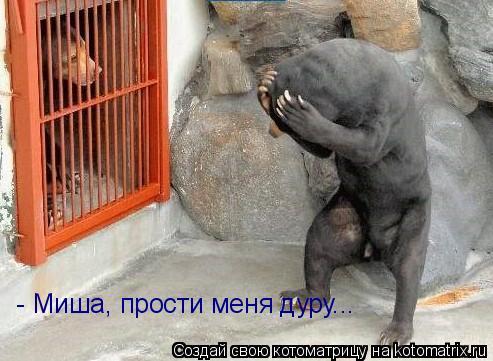 Котоматрица: - Миша, прости меня дуру...