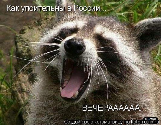 Котоматрица: Как упоительны в России... ВЕЧЕРАААААА...