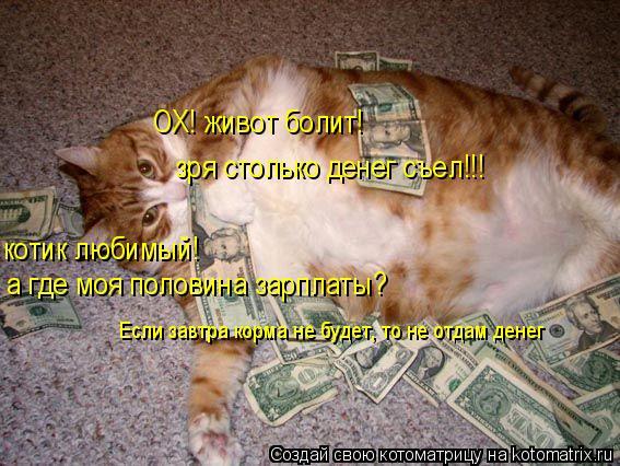 Котоматрица: ОХ! живот болит!  зря столько денег съел!!! котик любимый! а где моя половина зарплаты? Если завтра корма не будет, то не отдам денег