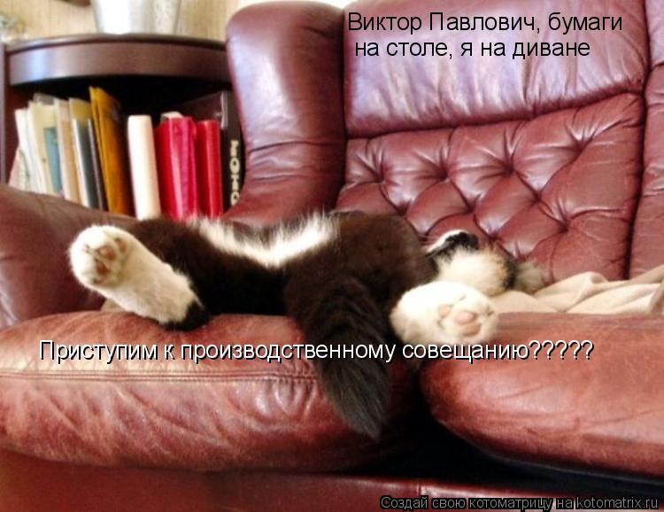 Котоматрица: Виктор Павлович, бумаги  на столе, я на диване Приступим к производственному совещанию?????