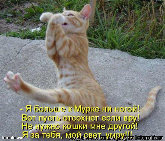 Котоматрица: - Я больше к Мурке ни ногой! Вот пусть отсохнет если вру! Не нужно кошки мне другой! Я за тебя, мой свет, умру!!!