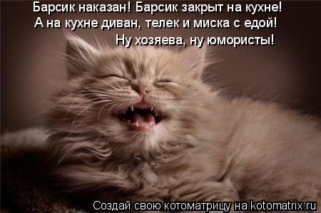 Котоматрица: Барсик наказан! Барсик закрыт на кухне! А на кухне диван, телек и миска с едой!  Ну хозяева, ну юмористы!