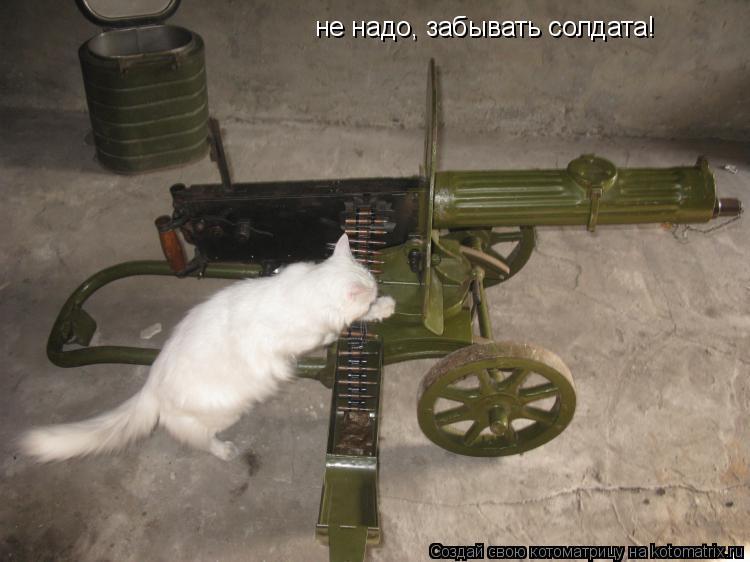 Котоматрица: не надо, забывать солдата!