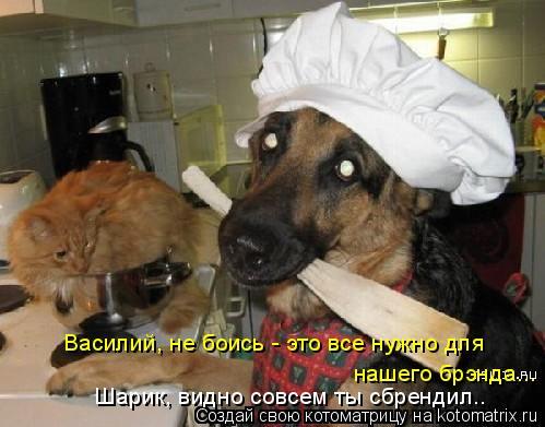 Котоматрица: Василий, не боись - это все нужно для  нашего брэнда... Шарик, видно совсем ты сбрендил..