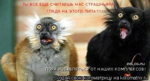 Котоматрица: ТЫ ВСЕ ЕЩЕ СЧИТАЕШЬ НАС СТРАШНЫМИ, ГЛЯДЯ НА ЭТОГО ТИПА?!!! ПОРА ИЗБАВЛЯТЬСЯ ОТ НАШИХ КОМПЛЕКСОВ!