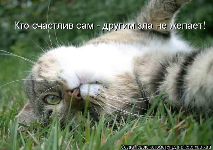 Котоматрица: Кто счастлив сам - другим зла не желает!