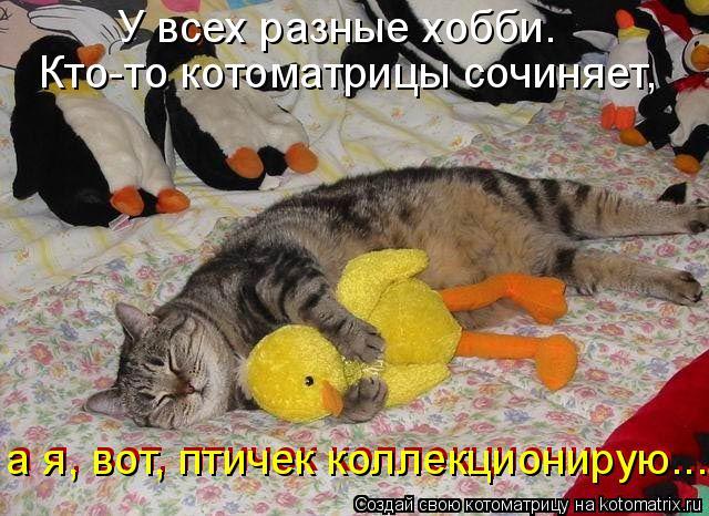 Котоматрица: У всех разные хобби. Кто-то котоматрицы сочиняет, а я, вот, птичек коллекционирую... а я, вот, птичек коллекционирую...