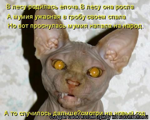 Котоматрица: В лесу родилась елоча.В лесу она росла А мумия ужасная в гробу своем спала Но вот проснулась мумия напала на народ. А то случилось дальше?смо
