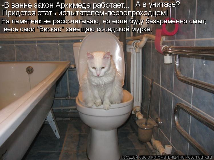 Котоматрица: -В ванне закон Архимеда работает... А в унитазе? Придется стать испытателем-первопроходцем! На памятник не расссчитываю, но если буду безвре