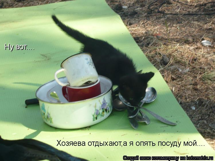 Котоматрица: Ну вот.... Хозяева отдыхают,а я опять посуду мой....