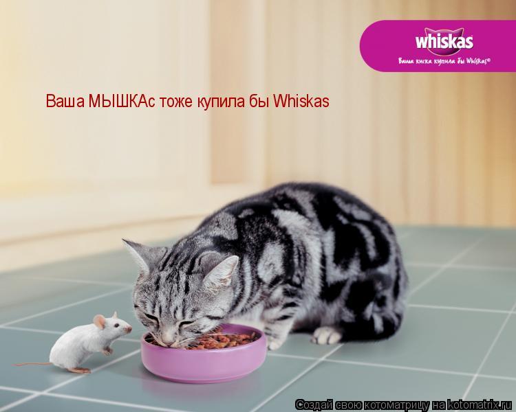 Котоматрица: Ваша МЫШКАс тоже купила бы Whiskas