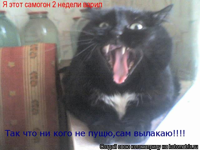 Котоматрица: Я этот самогон 2 недели варил Так что ни кого не пущю,сам вылакаю!!!!