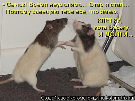 Котоматрица: - Сынок! Время неумолимо... Стар я стал... Поэтому завещаю тебе всё, что имею: КЛЕТКУ,  кота Ваську... и долги..