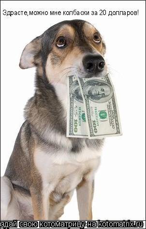 Котоматрица: Здрасте,можно Здрасте,можно мне колбаски за 20 долларов!