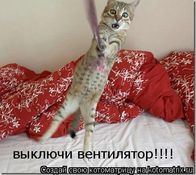 Котоматрица: выключи вентилятор!!!!