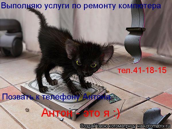 Котоматрица: Выполняю услуги по ремонту компютера Позвать к телефону Антона Антон - это я :) тел.41-18-15