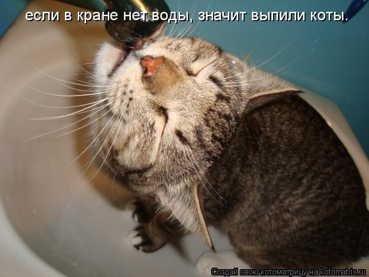 Котоматрица: если в кране нет воды, значит выпили коты.