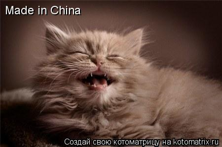 Котоматрица: Made in China
