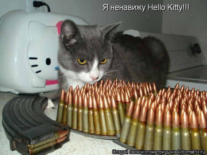 Котоматрица: Я ненавижу Hello Kitty!!!