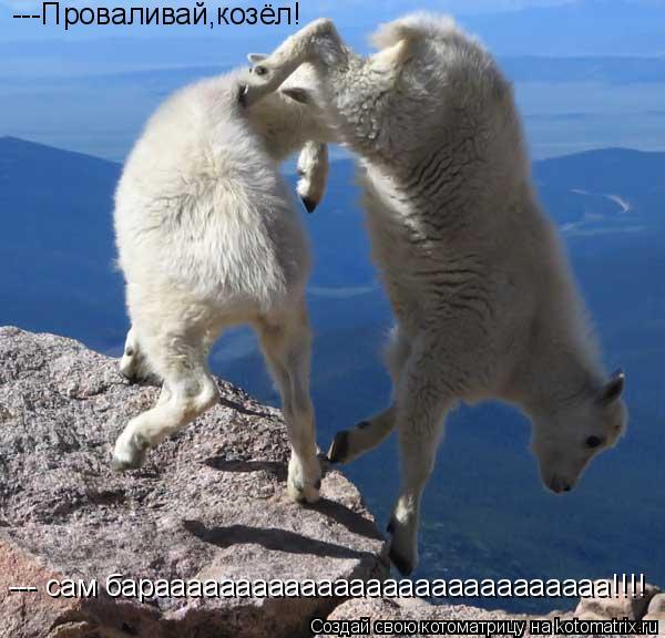 Котоматрица: ---Проваливай,козёл! --- сам бараааааааааааааааааааааааааааа!!!!