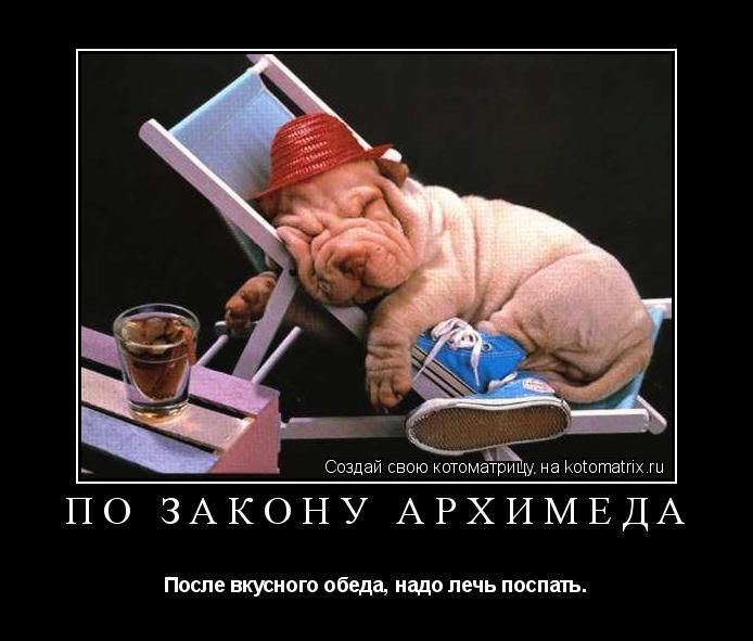 http://kotomatrix.ru/images/lolz/2009/07/01/r-.jpg