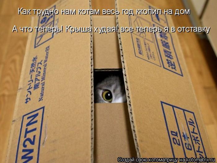 Котоматрица: Как трудно нам котам весь год ккопил на дом А что теперь! Крыша худая! все теперь я в отставку