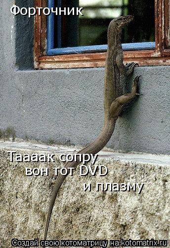 Котоматрица: Форточник Таааак сопру вон тот DVD и плазму