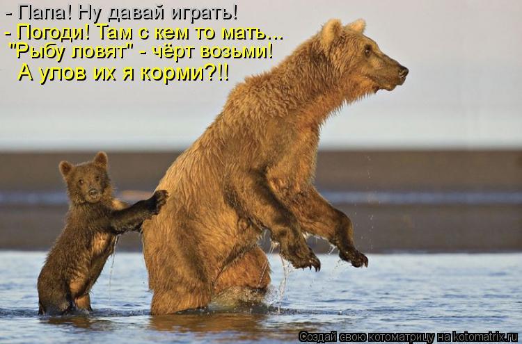 """Котоматрица: - Папа! Ну давай играть! - Погоди! Там с кем то мать... """"Рыбу ловят"""" - чёрт возьми! А улов их я корми?!!"""
