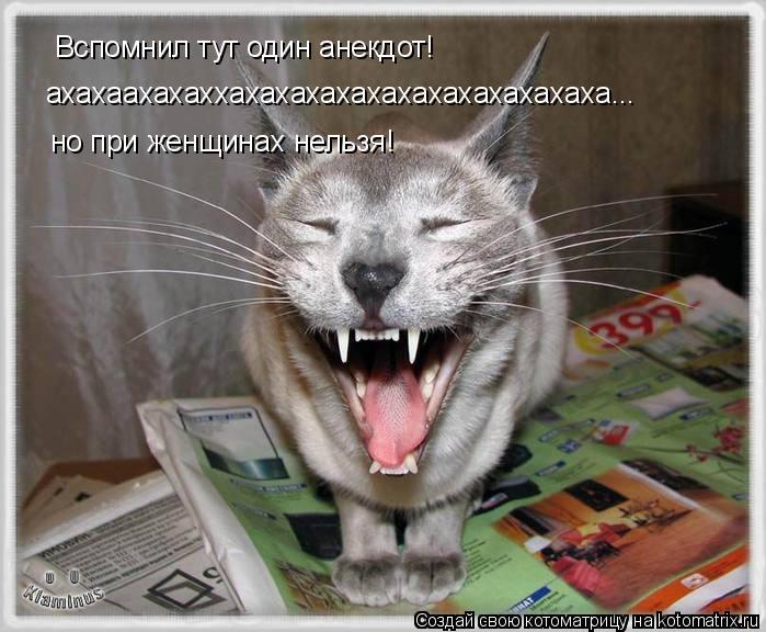 Котоматрица: Вспомнил тут один анекдот! ахахаахахаххахахахахахахахахахахахаха... но при женщинах нельзя!