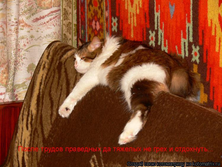 Котоматрица: После трудов праведных да тяжелых не грех и отдохнуть...