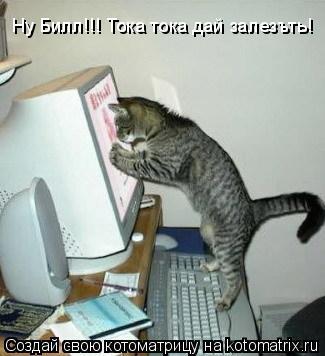 Котоматрица: Ну Билл!!! Тока тока дай залезъть!