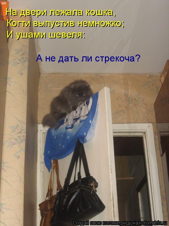 Котоматрица: На двери лежала кошка, Когти выпустив немножко; И ушами шевеля: А не дать ли стрекоча?