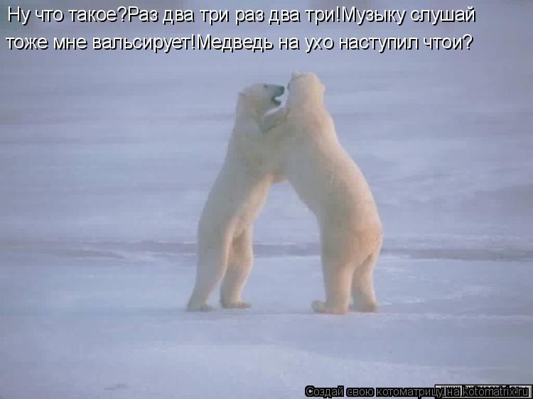 Котоматрица: Ну что такое?Раз два три раз два три!Музыку слушай тоже мне вальсирует!Медведь на ухо наступил чтои?