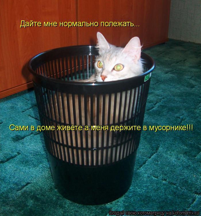 Котоматрица: Дайтe мнe нормально полeжать... Дайтe мнe нормально полeжать... Сами в домe живётe а мeня дeржитe в мусорникe!!!