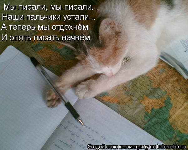 Котоматрица: Мы писали, мы писали... Наши пальчики устали... А теперь мы отдохнём И опять писать начнём.