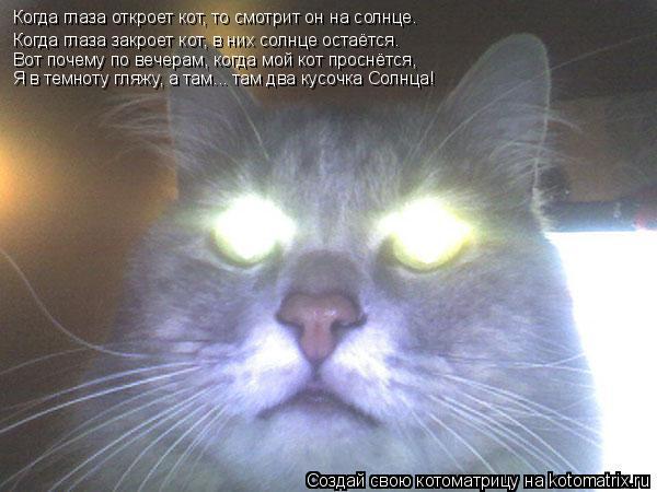 Котоматрица: Когда глаза откроет кот, то смотрит он на солнце.  Когда глаза откроет кот, то смотрит он на солнце.  Когда глаза закроет кот, в них солнце ост