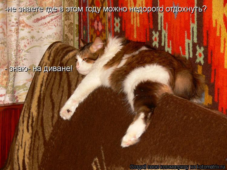 Котоматрица: -не знаете где в этом году можно недорого отдохнуть? - знаю- на диване!
