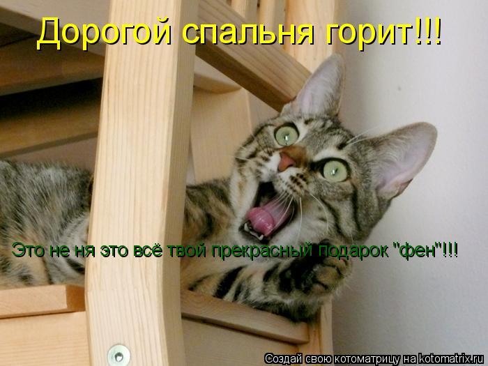 """Котоматрица: Дорогой спальня горит!!! Это не ня это всё твой прекрасный подарок """"фен""""!!!"""