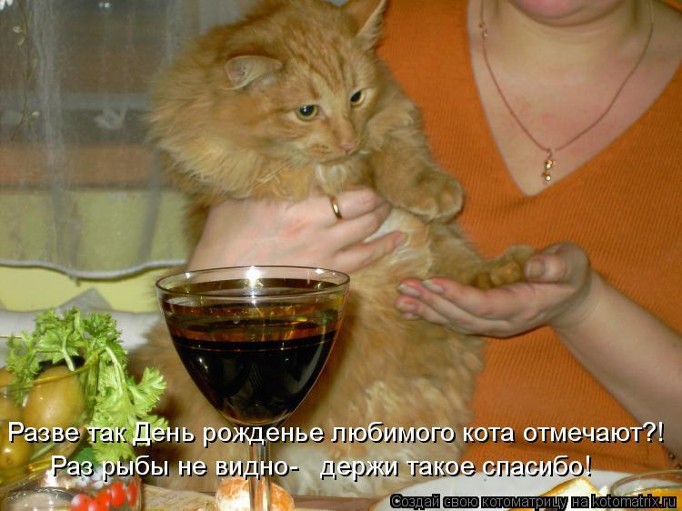 Котоматрица: Разве так День рожденье любимого кота отмечают?! Раз рыбы не видно-   держи такое спасибо!