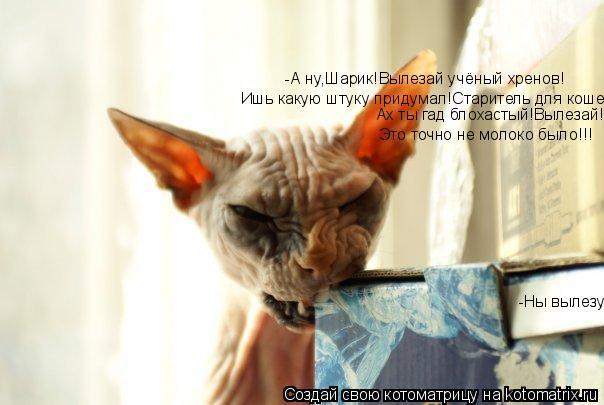 Котоматрица: -А ну,Шарик!Вылезай учёный хренов! Ишь какую штуку придумал!Старитель для кошек. Ах ты гад блохастый!Вылезай! Это точно не молоко было!!! -Ны в