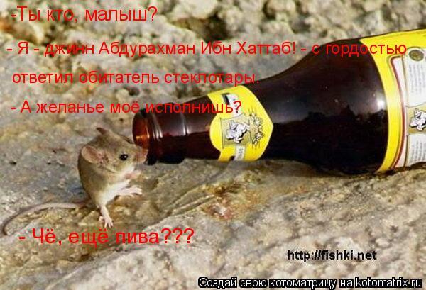 Котоматрица: -Ты кто, малыш? - Я - джинн Абдурахман Ибн Хаттаб! - с гордостью  ответил обитатель стеклотары. - А желанье моё исполнишь? - Чё, ещё пива???