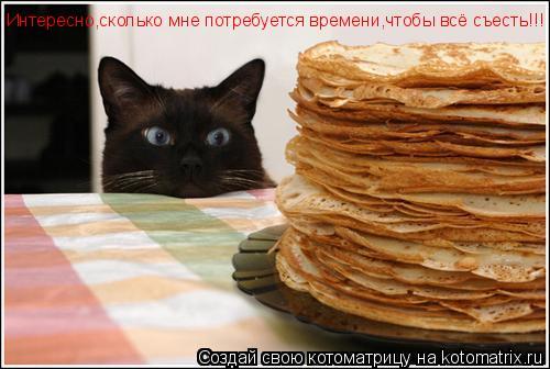 Котоматрица: Интересно,сколько мне потребуется времени,чтобы всё съесть!!!