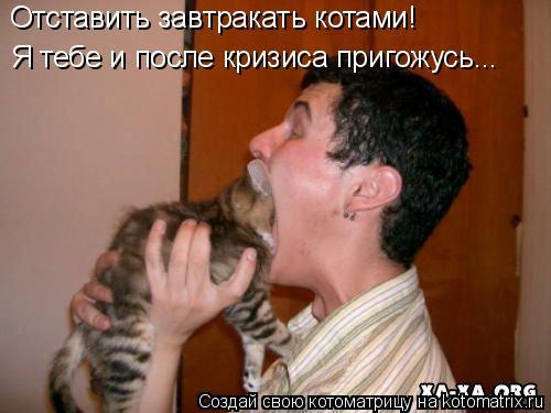 Котоматрица: Отставить завтракать котами! Я тебе и после кризиса пригожусь...
