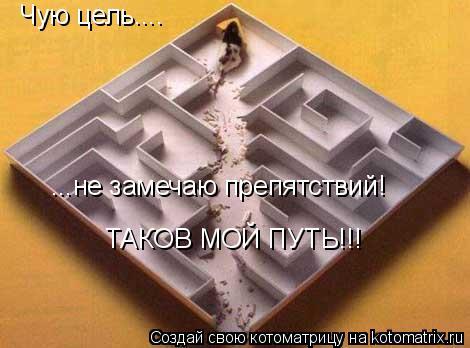 Котоматрица: Чую цель.... ...не замечаю препятствий! ТАКОВ МОЙ ПУТЬ!!!