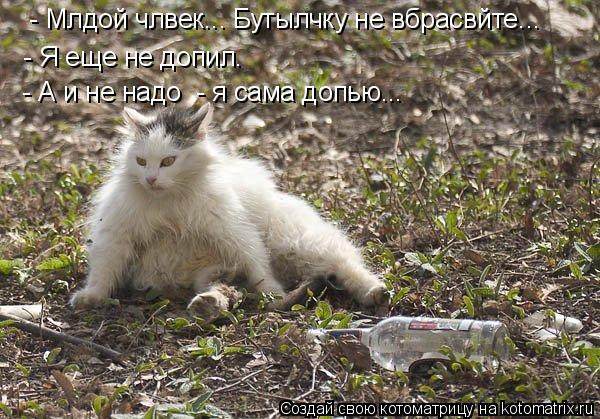 Котоматрица: - Я еще не допил. - А и не надо  - я сама допью...  - Млдой члвек... Бутылчку не вбрасвйте...