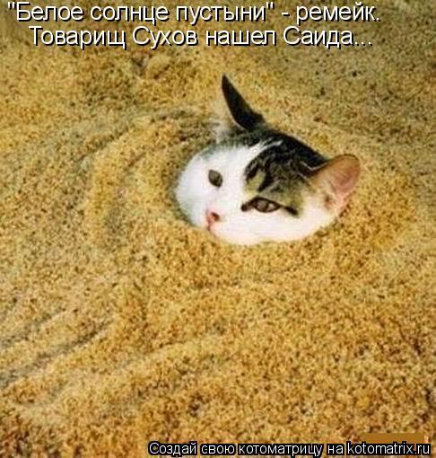 """Котоматрица: """"Белое солнце пустыни"""" - ремейк. Товарищ Сухов нашел Саида..."""