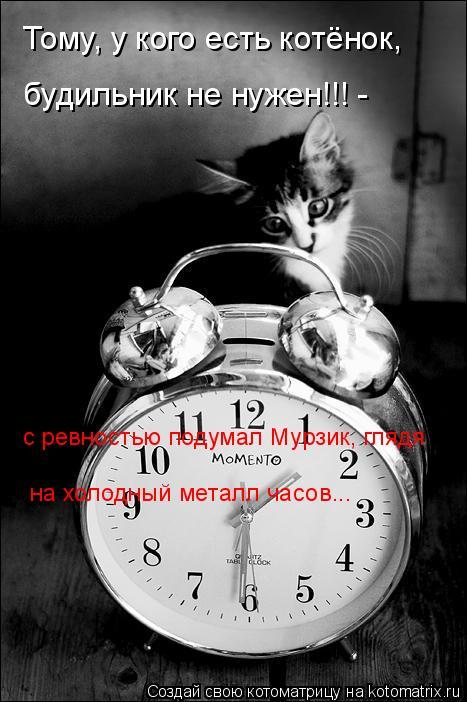Котоматрица: Тому, у кого есть котёнок, будильник не нужен!!! -  с ревностью подумал Мурзик, глядя на холодный металл часов...
