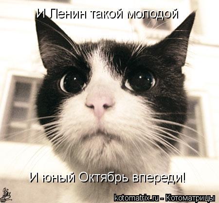 Котоматрица: И Ленин такой молодой И юный Октябрь впереди!