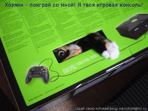Котоматрица: Хозяин - поиграй со мной! Я твоя игровая консоль!